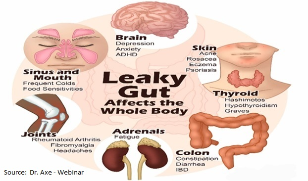 Tips To Heal Leaky Gut