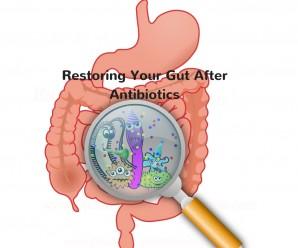 Restoring Your Gut After Antibiotics