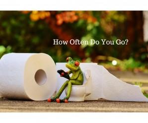 How Often Do You Go
